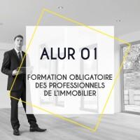 ALUR 01: Formation Obligatoire des Professionnels de l'Immobilier - Obligation décret 2016-173 du 18 février 2016 ALUR