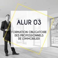 ALUR 03 : Formation obligatoire des professionnels de l'immobilier - contentieux et financement en transaction immobilière