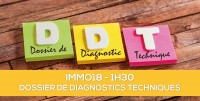 E-learning ALUR : IMMO18 Le Dossier de Diagnostics Techniques