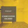 PODCAST IMMO08 : Les normes de décence d'un logement