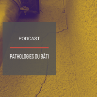 PODCAST IMMO14 : Pathologies du bâti