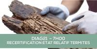 DIAG21 : RECERTIFICATION TERMITES SANS MENTION : formation continue obligatoire des opérateurs (7H)